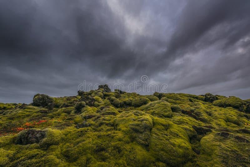 Montes verdes da coberta do musgo da rocha da lava imagens de stock royalty free