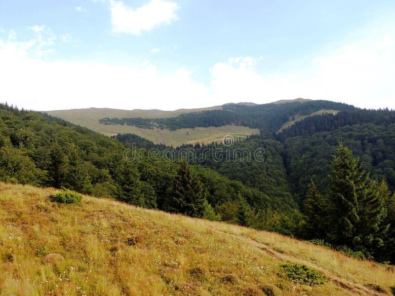 Montes verdes das montanhas imagens de stock royalty free