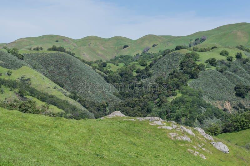 Montes verdes de rolamento, e terra rochoso imagem de stock royalty free