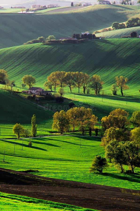 Montes verdes e campos foto de stock royalty free