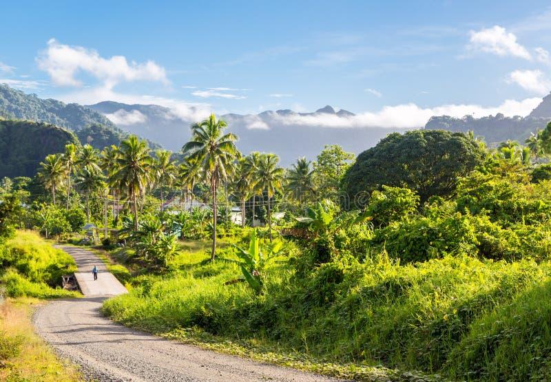 Montes vulcânicos, montanhas, vales, boca do vulcão da ilha verde bonita de Ovalau da luxúria coberto de vegetação com as palmas, fotografia de stock royalty free