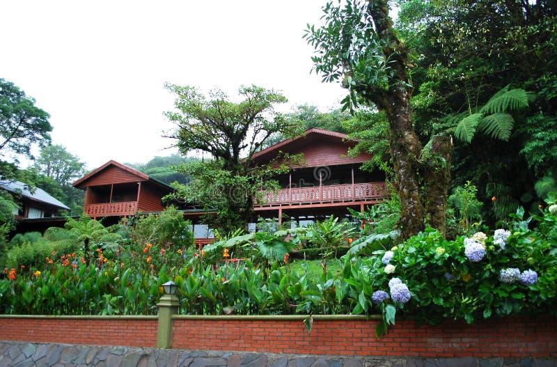 Monteverde Nationaal Park stock foto