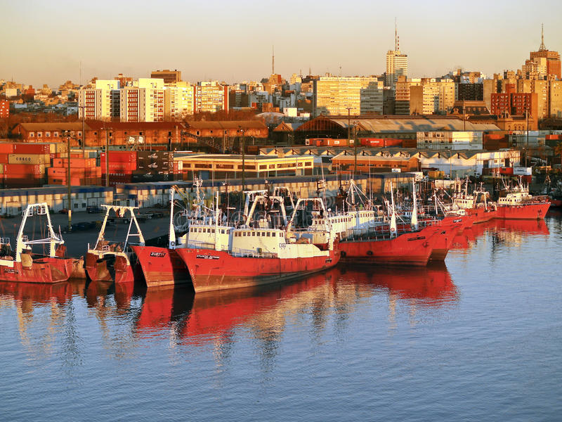 Montevideo port royaltyfri foto