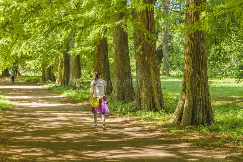 Woman Walking at Nature Path. MONTEVIDEO, URUGUAY, MARCH - 2016 - Young woman with sportwear walking at nature path at botanical garden of Montevideo royalty free stock images