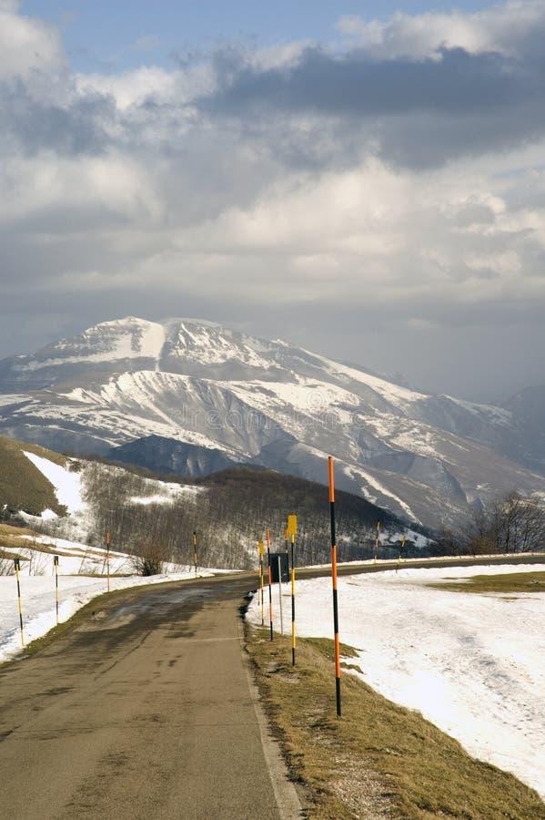 Montez Nerone photo stock