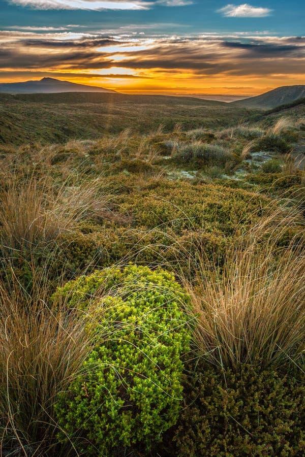 Montez Taranaki à la montagne parfaite de volcan du Nouvelle-Zélande de coucher du soleil image stock