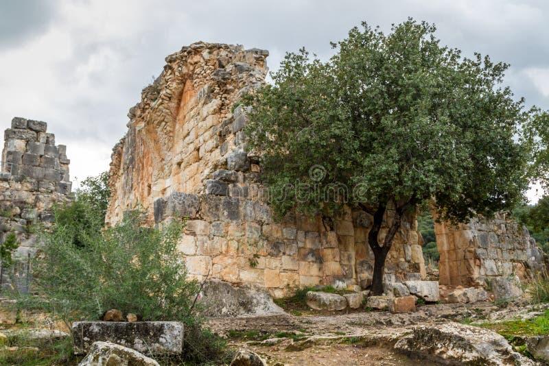 Montfort slott i övreGalilee, Israel royaltyfri fotografi