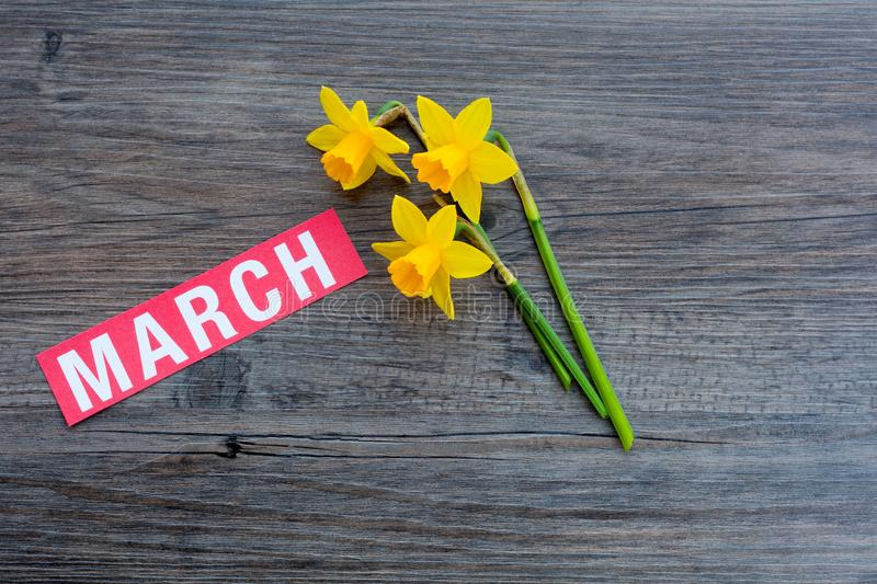 Month of March Concept royalty free stock images