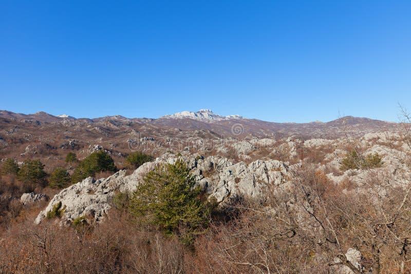 Monti Lovcen nel parco nazionale di Lovcen vicino a Cetinje, Montenegro immagini stock libere da diritti