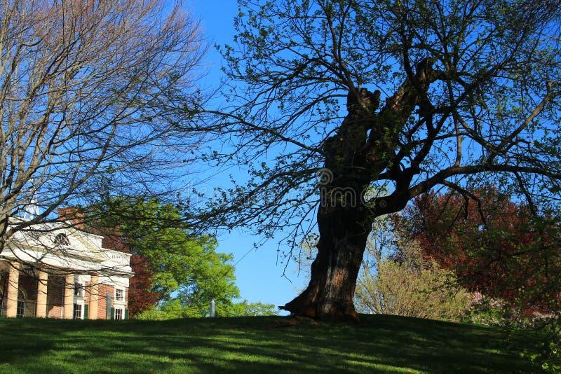 Monticello - Вирджиния стоковые изображения rf