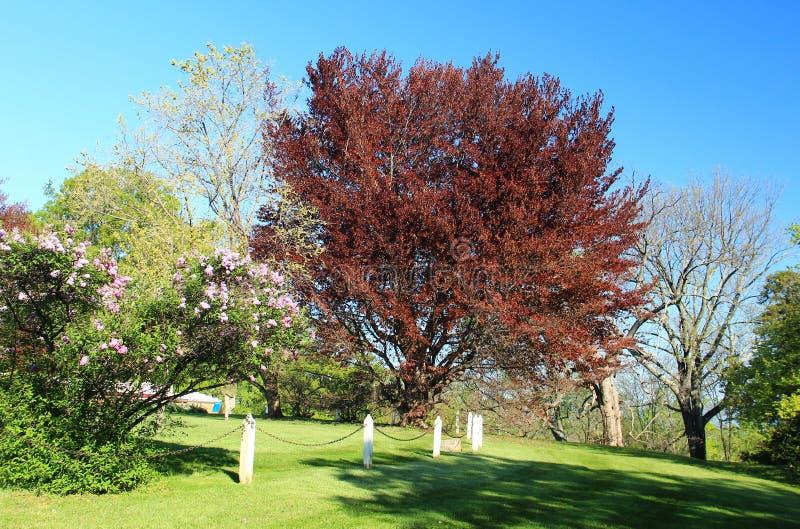 Monticello - Вирджиния стоковое фото