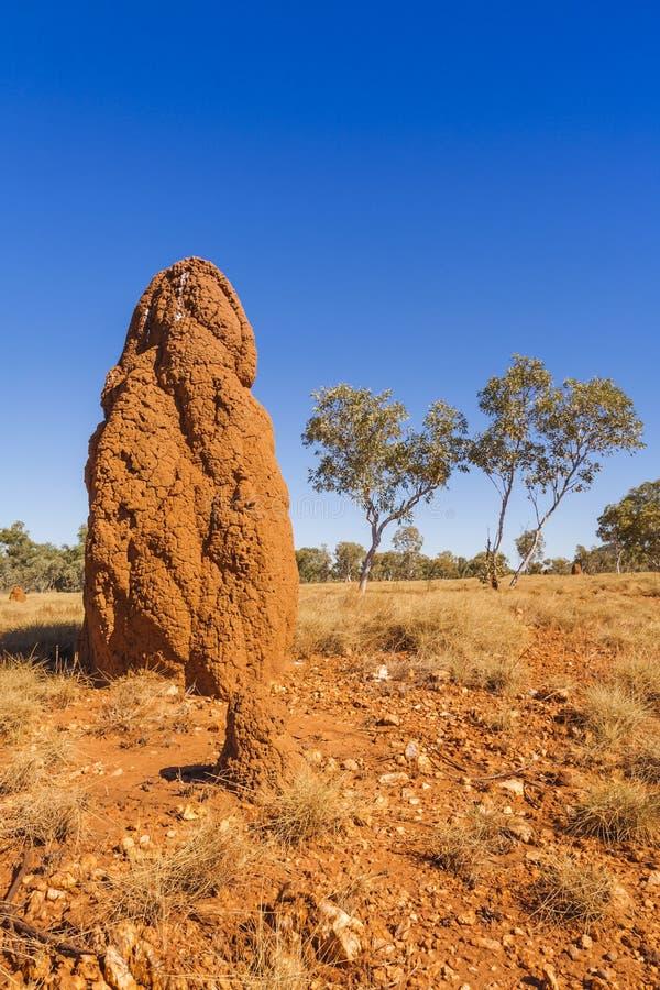 Monticello gigante della termite sull'Australia occidentale di entroterra fotografia stock