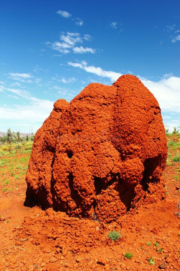 Monticello massiccio della termite nell'entroterra australiana, Australia occidentale immagine stock