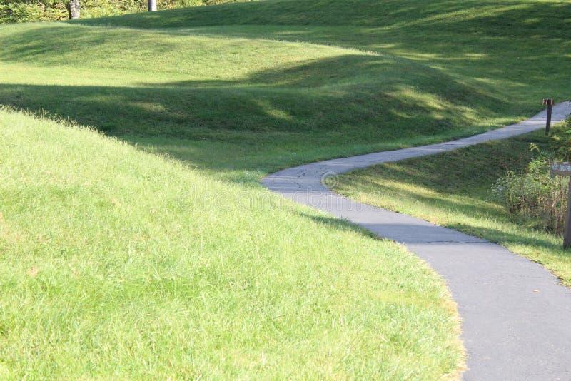 Monticello Ohio del serpente fotografia stock libera da diritti