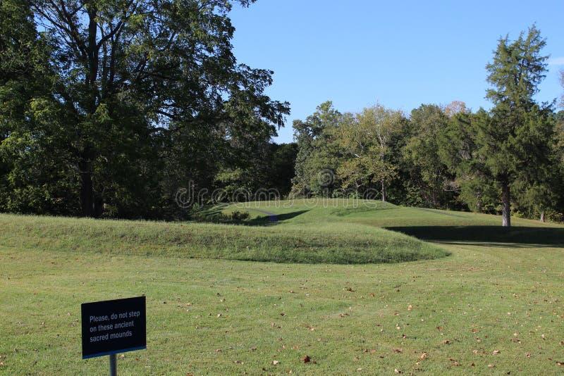 Monticello Ohio del serpente immagini stock libere da diritti