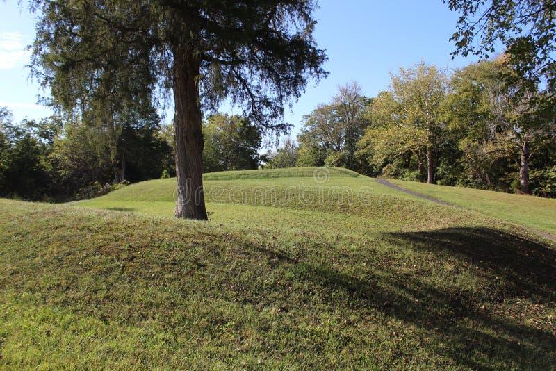 Monticello Ohio del serpente fotografia stock