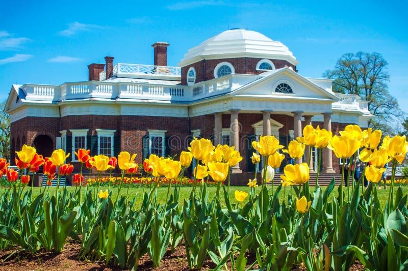 Monticello Tulip Garden fotografia stock