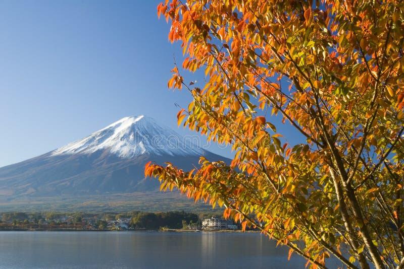 Montierung Fuji in Fall IX lizenzfreies stockbild