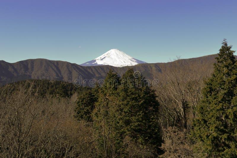 Montierung Fuji im Winter lizenzfreie stockfotos