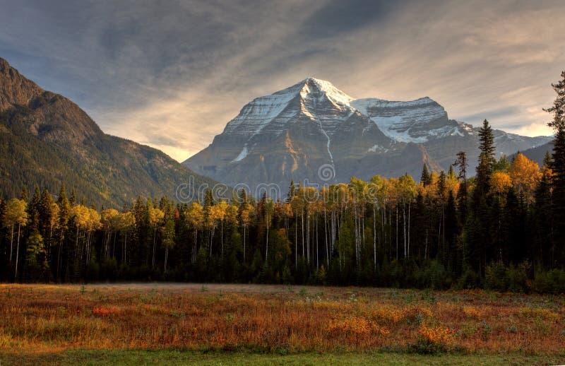Montierung Robson im Herbst lizenzfreie stockfotografie