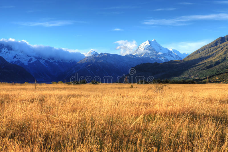 Montierungs-Koch, Neuseeland lizenzfreie stockfotografie