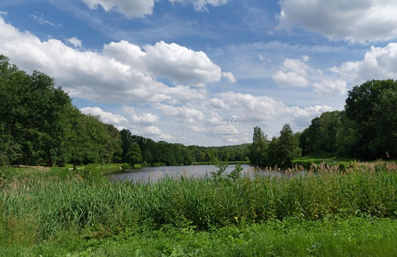 Montmorency forest. In ile  de France country royalty free stock photo
