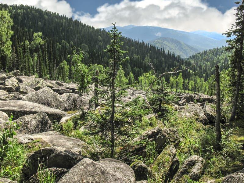 Montones de los fragmentos de la roca - dispersión de piedras grandes en cuesta de montaña - paisaje del verano imagenes de archivo