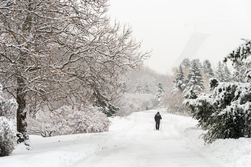 Montréal, CA - 4 janvier 2017 : Paysage neigeux d'hiver dans Montrea image stock