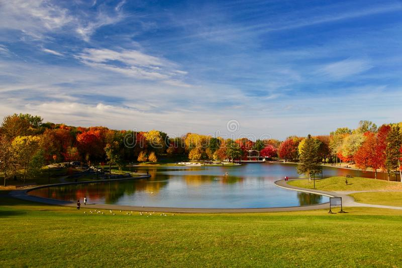 Montreal, Autumn, Quebec Canada. Autumn in Montreal Quebec Canada. flower, lake and maple leaf royalty free stock image