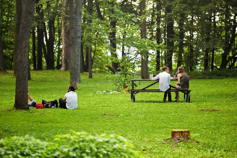Two young couples sitting on the grass and bench in the forest and having a conversation in Mount Royal park, Montreal, Canada stock images