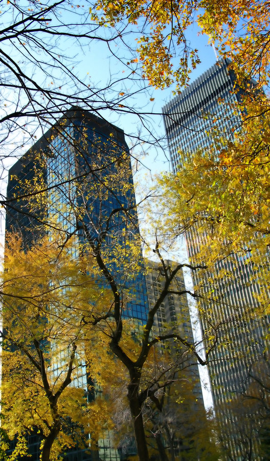 Montreal city autumn scene royalty free stock images