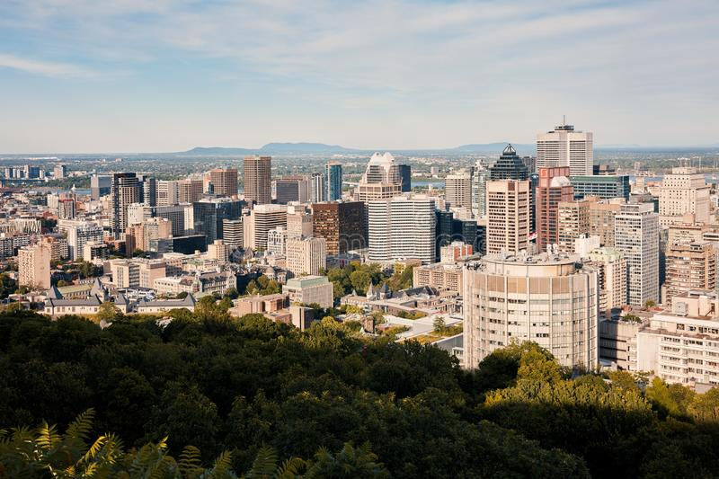 Montreal city skyline view from Mount Royal on a sunny summer afternoon in Quebec, Canada royalty free stock images