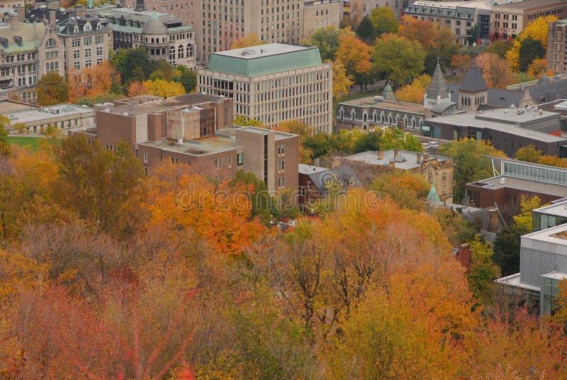 Montreal de stad in tijdens Daling stock afbeeldingen