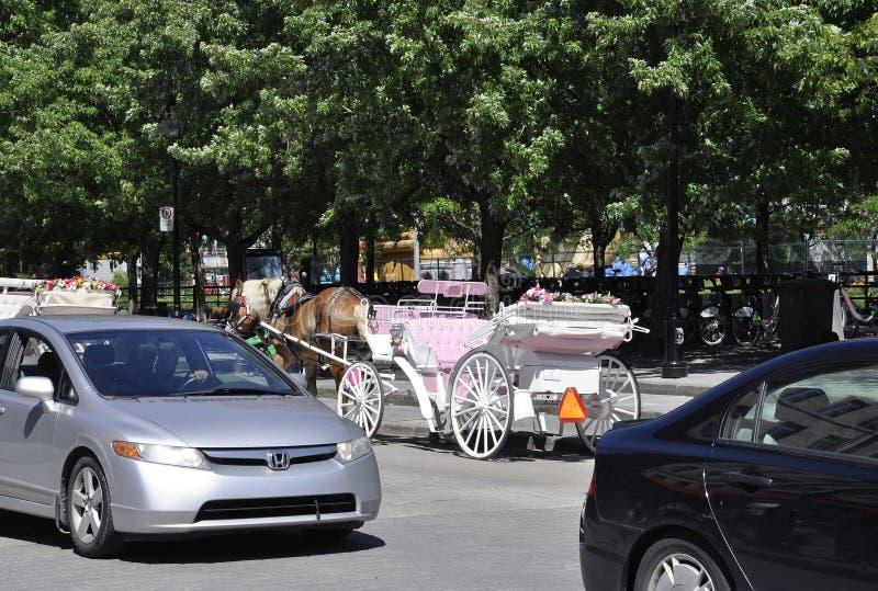 Montreal, il 26 giugno: Trasporto bianco per il giro turistico nel centro Ville di Montreal nel Canada immagine stock libera da diritti