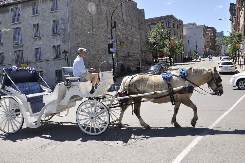 Montreal, il 26 giugno: Trasporto bianco per il giro turistico nel centro Ville di Montreal nel Canada immagini stock