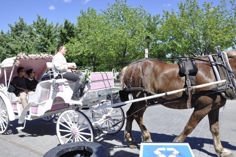 Montreal, il 26 giugno: Trasporto bianco per il giro turistico nel centro Ville di Montreal nel Canada fotografia stock libera da diritti