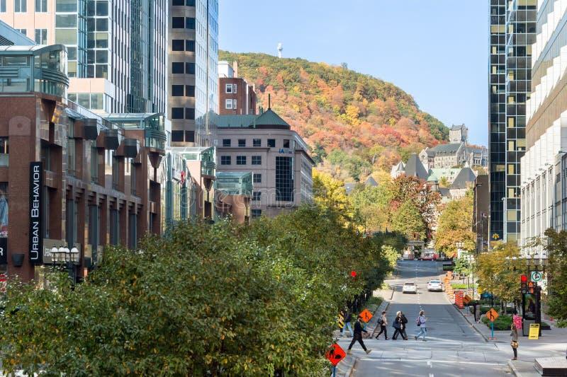 Montreal Kanada - McGill högskolaaveny royaltyfri fotografi