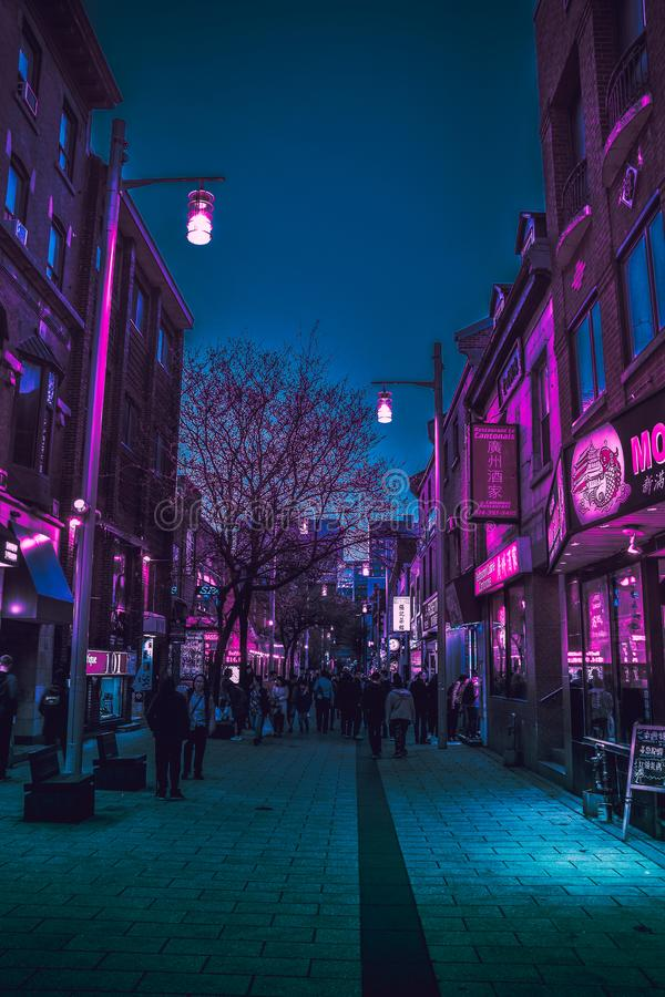 Montreal kineskvarter - midnatt går arkivbilder