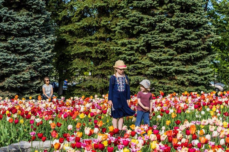 MONTREAL, QUEBEC, CANADA - MEI 21, 2018: Mensen bij park Plaatselijke bewoners en toeristen in van het de bloempark van Montreal  stock foto's