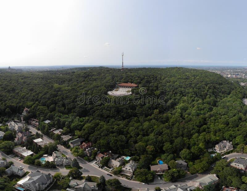 Montreal-Stadtbrummenvogelperspektive in Sommerpark Berg königlich stockbild