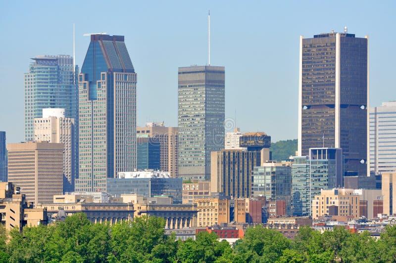 Montreal-Stadtskyline im Sommer, Quebec, Kanada stockbilder