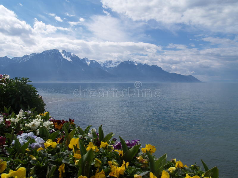 Download Montreux stock photo. Image of twilight, glion, flowers - 10106008