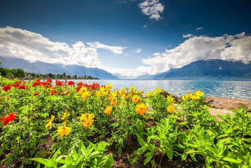 Montreuxstad met Zwitserse Alpen, meer Genève en wijngaard op Lavaux-gebied, Kanton Vaud, Zwitserland, Europa royalty-vrije stock foto