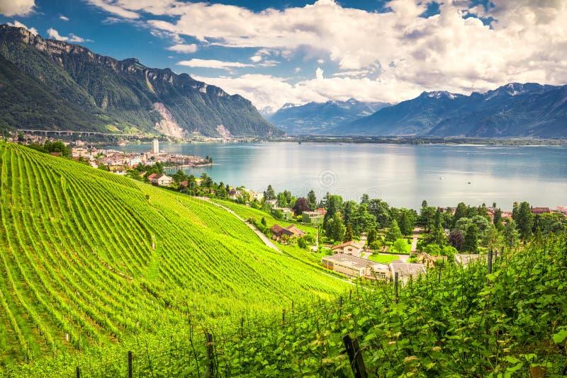 Montreuxstad met Zwitserse Alpen, meer Genève en wijngaard op Lavaux-gebied, Kanton Vaud, Zwitserland, Europa stock foto's