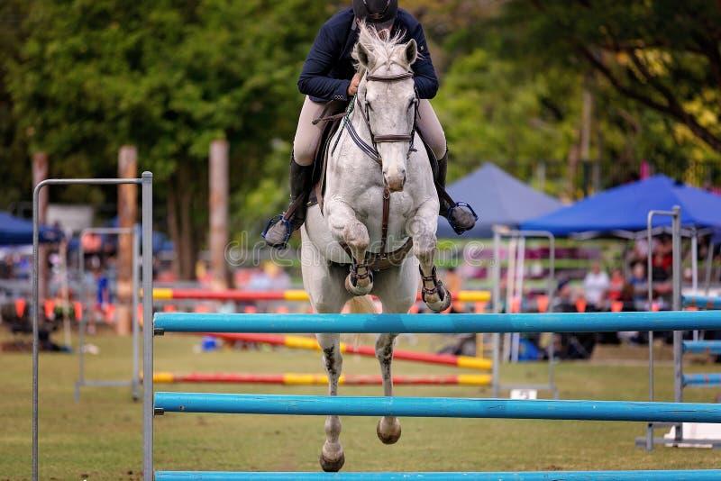 Montrez à concurrent sautant chez dans Ring Events At une exposition de pays images stock