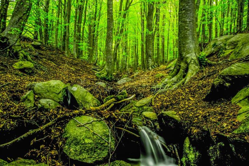 Montseny. Parque Natural Montseny -Sant celoni royalty free stock photography