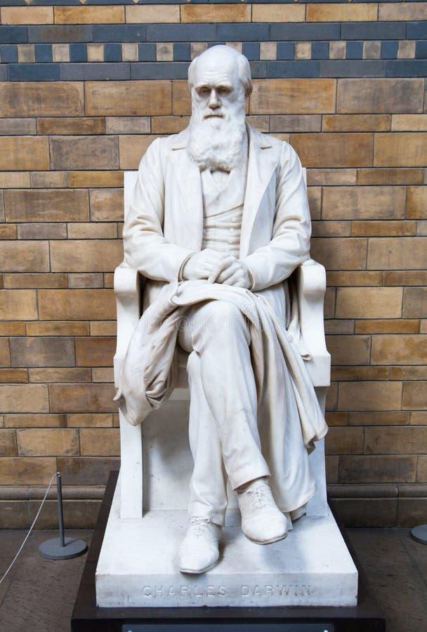 Monument de Charles Darwin, musée national d'histoire, Londres photo libre de droits