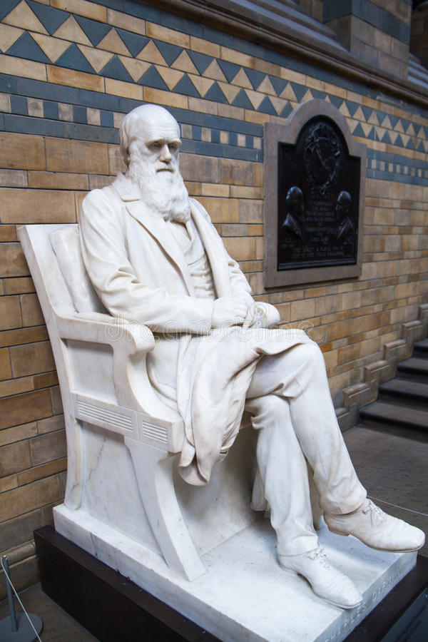Monument de Charles Darwin, musée national d'histoire, Londres images stock