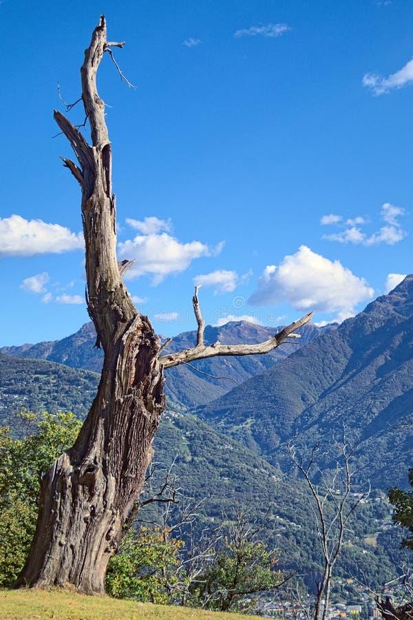 Monument de nature image libre de droits