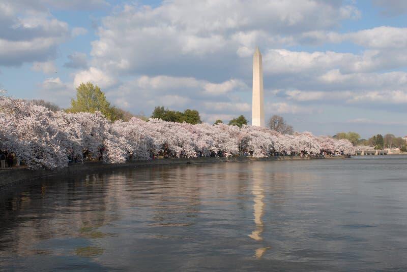 Monument de Washington images stock